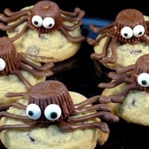 طرز تهیه کوکی عنکبوتی برای عصرانه بچه ها